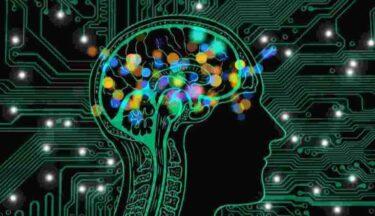 マインドフルネスの脳科学的効果とは?【おすすめ本の紹介もあり】